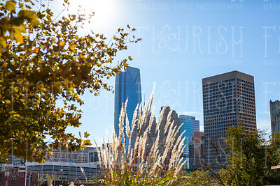 033_Flourish_BG_City-31_LowRes72dpi
