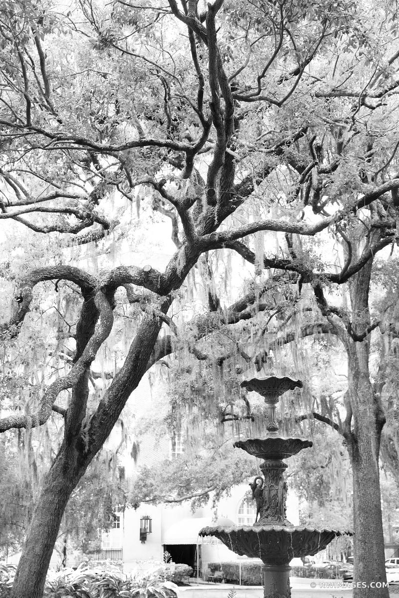 LAFAYETTE SQUARE FOUNTAIN SAVANNAH GEORGIA BLACK AND WHITE VERTICAL