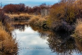 River in Malheur Wildlife Refuge