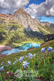 Blue Lake Columbines