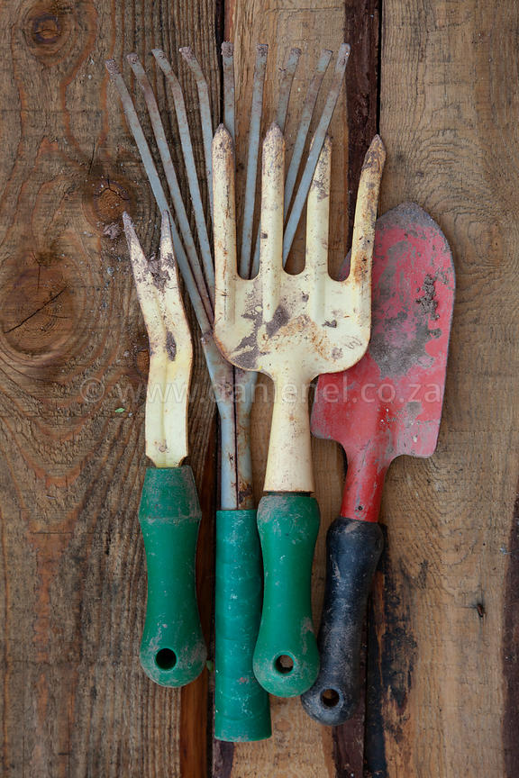 A collection of gardening tools on a wood background.