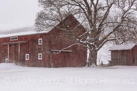 Classic Barn near Battle Creek, Michigan