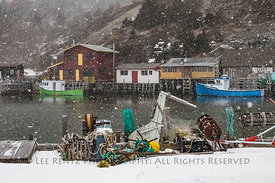 Snow Falling in Quidi Vidi Village