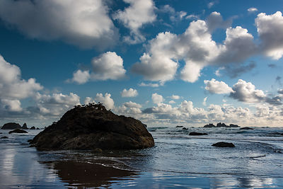 oregon_coast-219