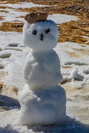 Snowman at Beartooth Pass along Beartooth Highway