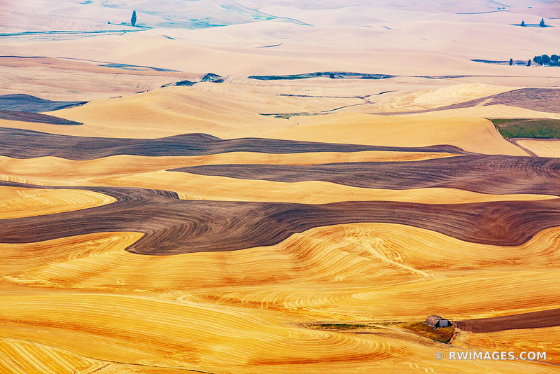 STEPTOE BUTTE STATE PARK PALOUSE REGION EASTERN WASHINGTON STATE LANDSCAPE