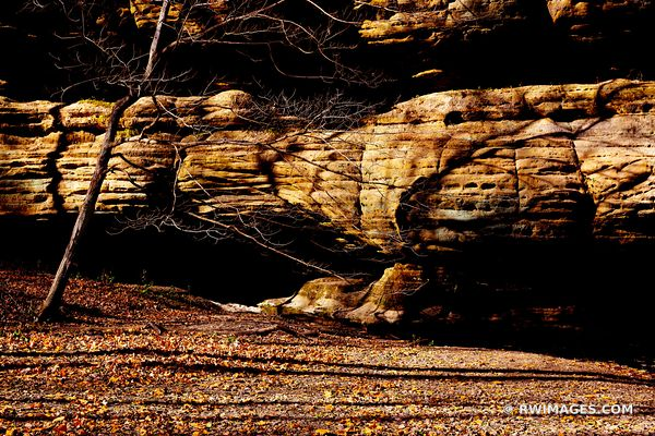 STARVED ROCK STATE PARK ILLINOIS MIDWESTERN LANDSCAPE