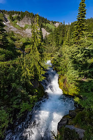 Rushing Stream in Mount Rainier National Park