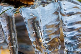 Icicles Forming in Great Basin National Park