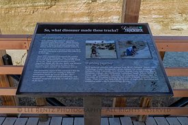 Interpretive Sign at Red Gulch Dinosaur Tracksite
