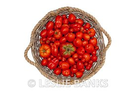 Top View of Tomato Basket