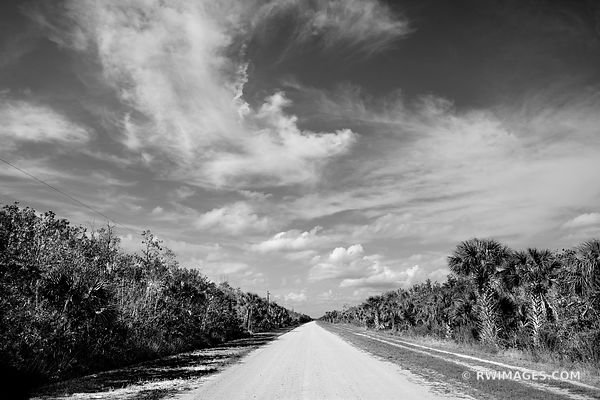 BIRDON ROAD BIG CYPRESS NATIONAL PRESERVE EVERGLADES FLORIDA BACKROADS BLACK AND WHITE