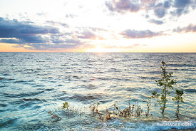 SUNSET LAKE MICHIGAN WASHINGTON ISLAND DOOR COUNTY WISCONSIN