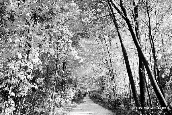 AUTUMN TREES HIGHLAND PARK ILLINOIS CHICAGO NORTHSHORE FALL SEASON COLORS ROBERT MC CLORY BIKE PATH GREENBAY TRAIL BLACK AND ...