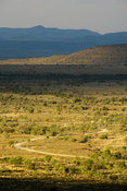 Scenic view, Mountain Zebra National Park, South Africa