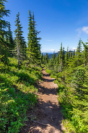 Snowgrass Trail in the Goat Rocks Wilderness