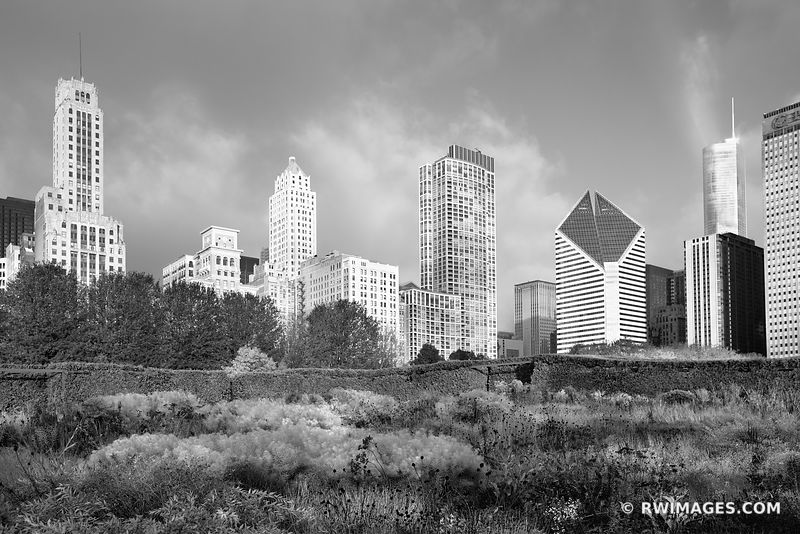 LURIE GARDEN CHICAGO ILLINOIS BLACK AND WHITE
