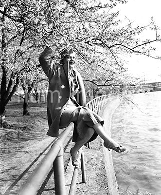 Woman posing with cherry blossom trees in Washington D.C. ca. March 1936