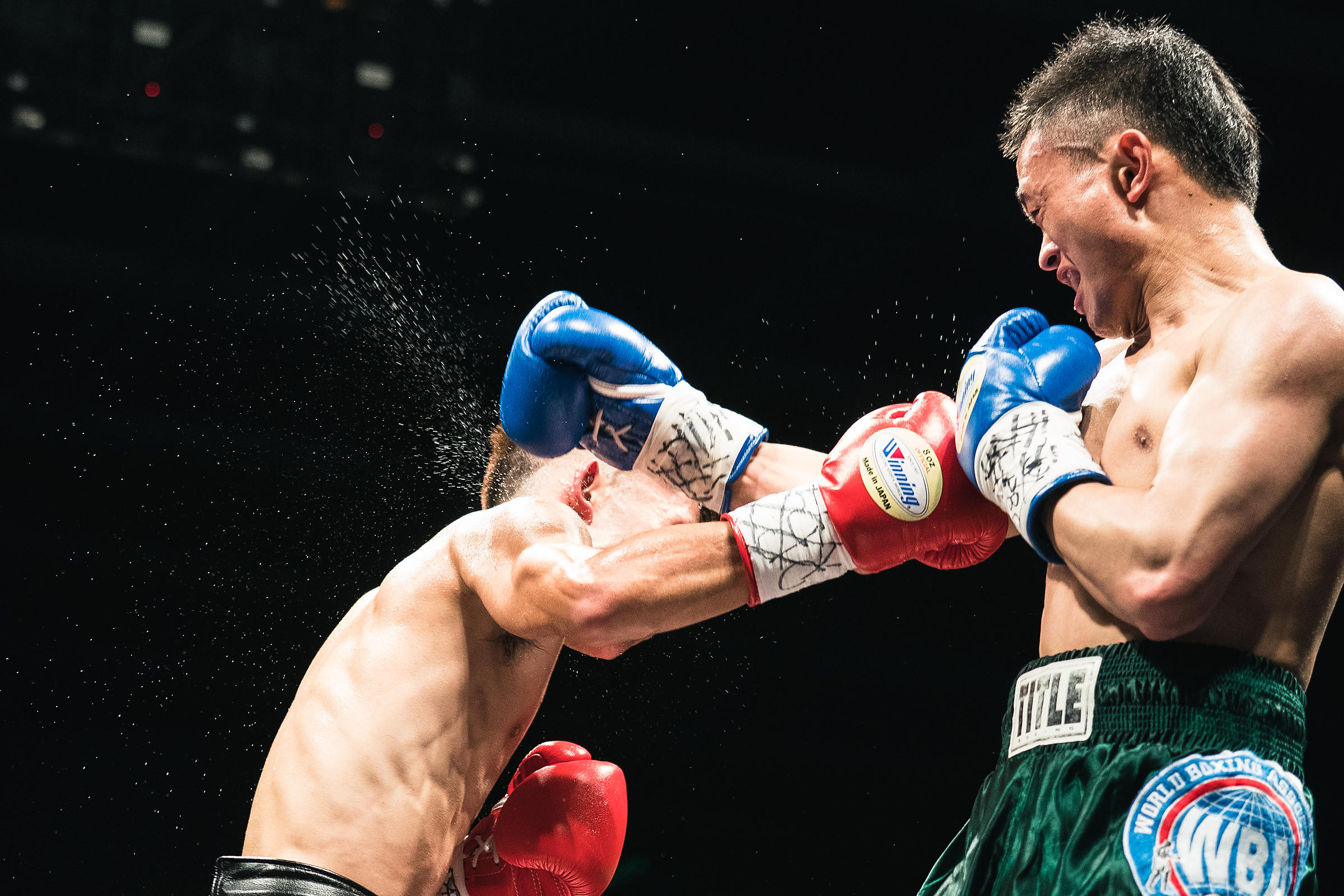 Asian Professional Boxing Championship 2019