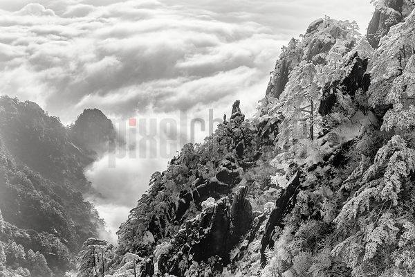 Huangshan Mountains above the Sea of Clouds at Sunrise