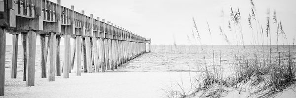 Pensacola Pier and Beach Grass Black and White Panoramic Photo