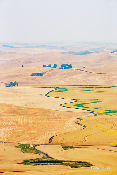 STEPTOE BUTTE STATE PARK PALOUSE REGION EASTERN WASHINGTON STATE LANDSCAPE COLOR VERTICAL