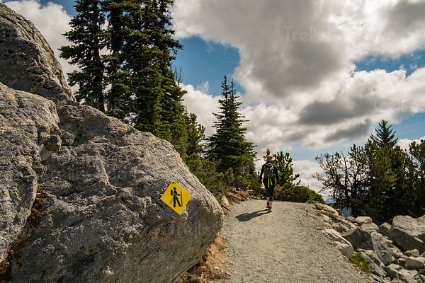 Hiker walking by trail marker on hiking trail, Blackcomb Mountain, Whistler, Canada.