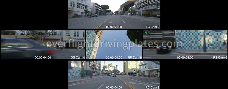 Tree Lined Commercial  Santa Monica California USA - Driving Plate Preview 2012