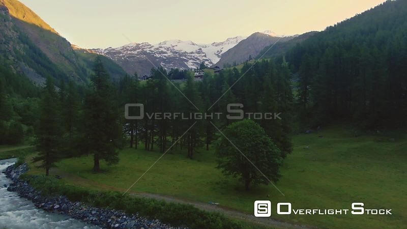 view of Monte Rosa in the Italian Alps through pine trees at sunrise
