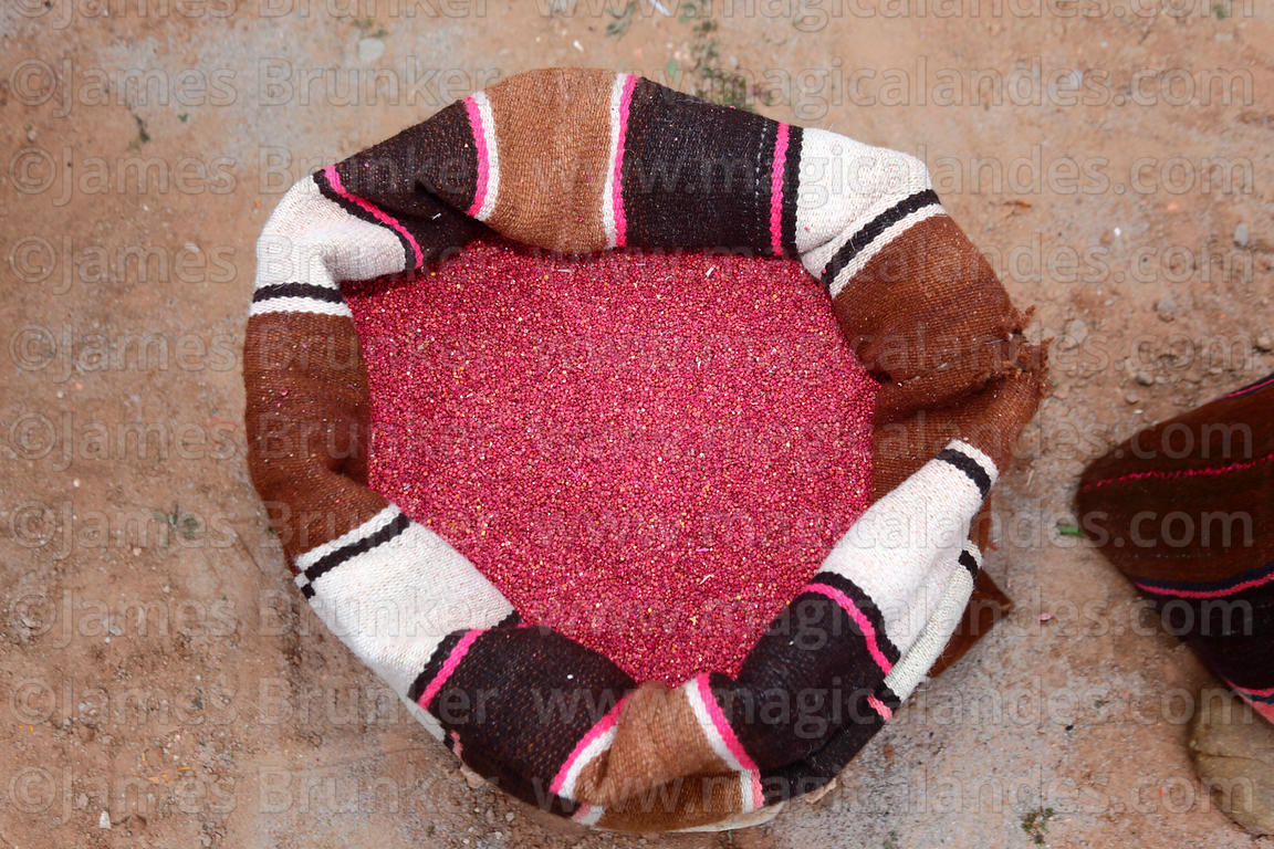 Red quinoa grains in a woven wool bag, Bolivia