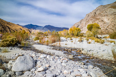 A flowing water in a stream of Whitewater Preserve Wildlands Conservancy