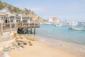 Catalina Island Casino and Avalon Bay Photo