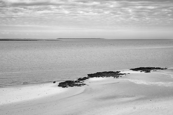 HALF MOON BLUFF BEACH OYSTER CLUSTERS CUMBERLAND ISLAND GEORGIA BLACK AND WHITE