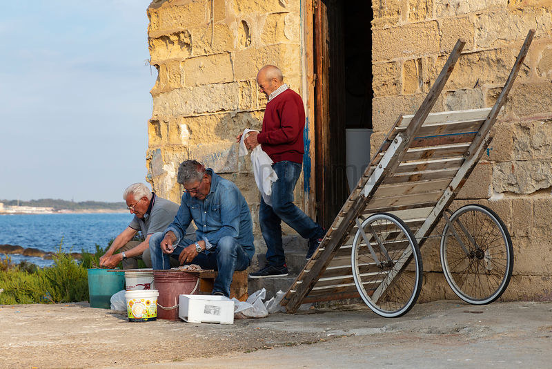 Fishermen Clean Freshly-caught Squid in the Late Afternoon Light
