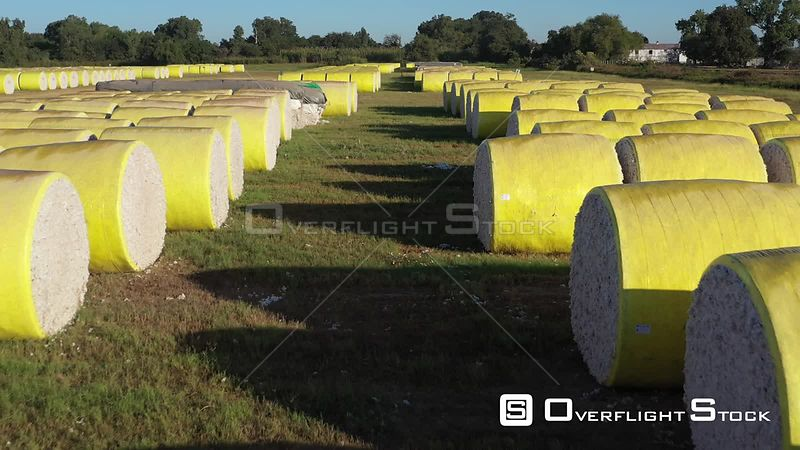 Rows of Cotton Bales Waiting at the Gin, Brazos County, Texas, USA