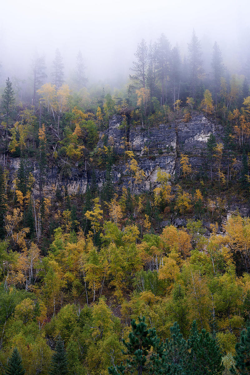 Spearfish_Foliage
