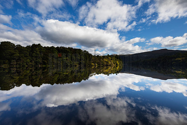 Clouds and Rainforest Reflections on the Pieman River