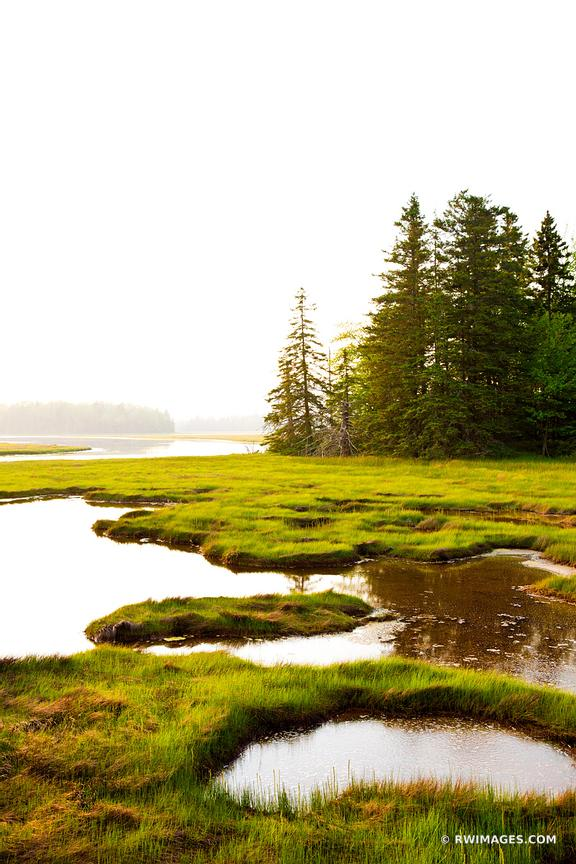 PRETTY MARSH AREA ACADIA NATIONAL PARK COLOR VERTICAL
