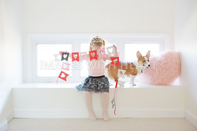 corgi puppy and girl lifestyle with paper hearts