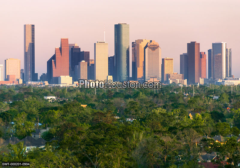 Houston sunset and green trees