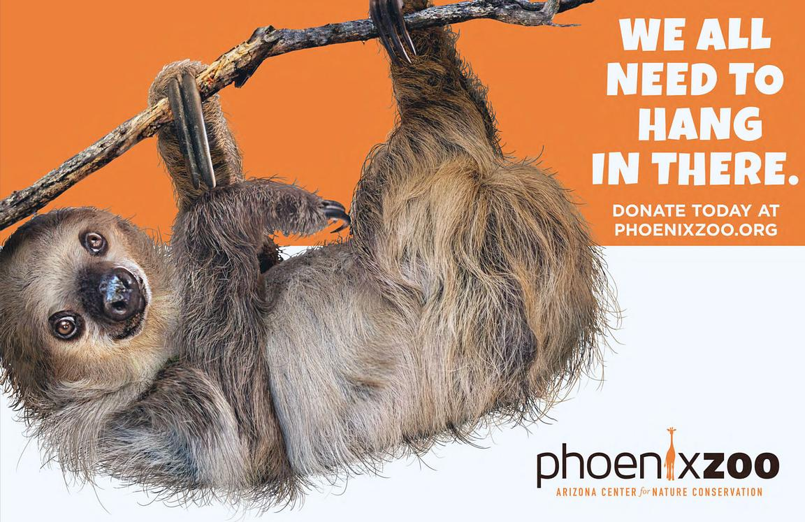 Phoenix_Zoo_Hang_in_There