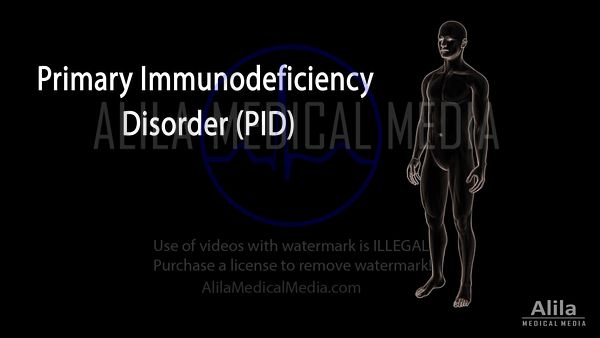 Primary immunodeficiency disorder (PID) NARRATED animation