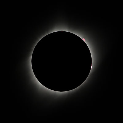 Eclipse with Prominences