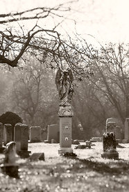 Cemetery Angel an Bare Trees