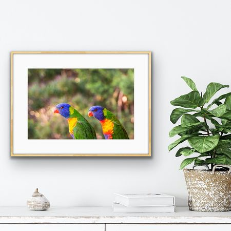 May print special (feathered)