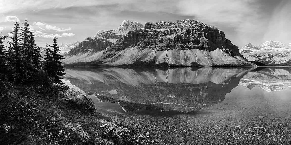 Crowfoot Reflection B&W