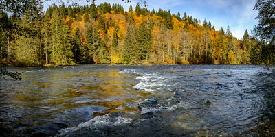 Campbell River Fall