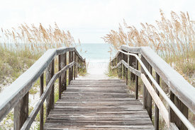 Beach Boardwalk and Sea Oats Grass Pensacola Florida Photo