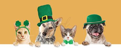 St Patricks Day Cats and Dogs Over Banner