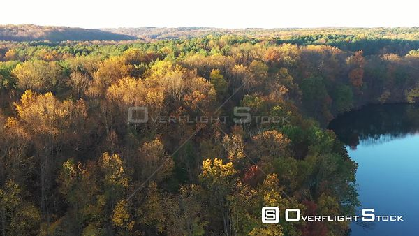 Green and Yellow Leaves on Trees by a  Lake, Owings Mills, Maryland, USA